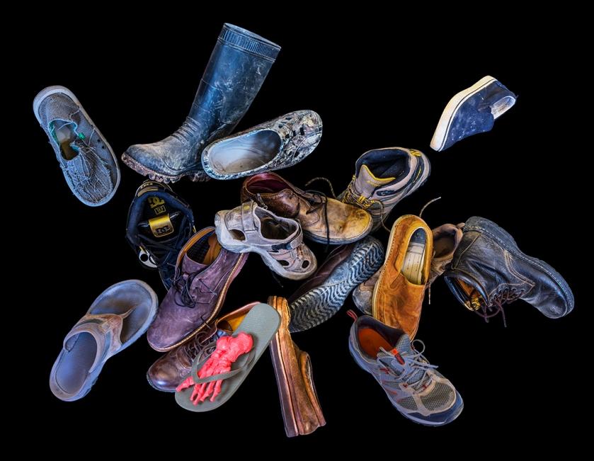 new shoe swarm blog